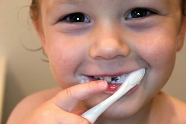 dental services - find a dentist